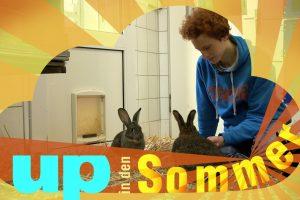 Fabian Simon beim Tierheim Stuttgart