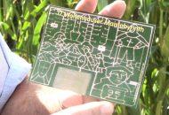 Maislabyrinth